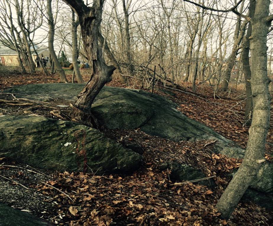 Proctors ledge, a small rock outcropping shown n this photograph was the original site of the Salem Witch trial hangings, bodies lay about decomposing