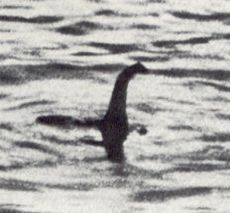 the famous photo of nessie in black and white